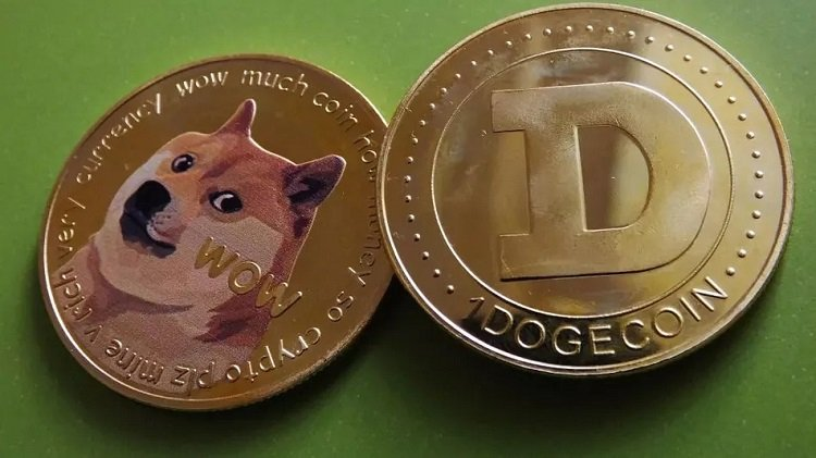 """Bronte Capital manager links bitcoin """"bottom"""" to Dogecoin value"""